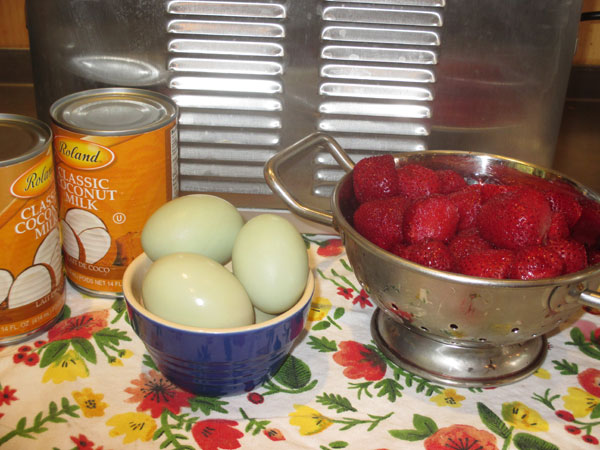 Homemade Strawberry Ice Cream Ingredients